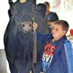 Our Opinion: Luzerne County Fair gets its zest from blue ribbon-vying entrants