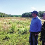 Northeast Power out to establish a wild pheasant population on reclaimed strip mine