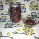 Test Kitchen: Honey Spiced Cranberry Relish