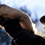 Our Opinion: Our feud with Punxsutawney Phil thawing