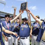 Northwest wins D2-2A baseball title on wild finish