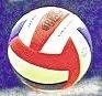 H.S. Boys Volleyball: Wyoming Valley West gains a little revenge on North Pocono