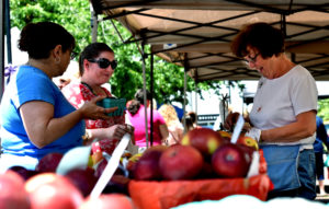 Wilkes-Barre Farmers Market opens for 2016 season