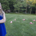 Flamingo flocking in Mountain Top for a good cause